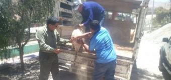 HOY SE INAUGURA NUEVO PLAN DE NEGOCIOS DE PROCOMPITE EN TUMILACA