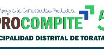 SE PUBLICA RELACION DE PROPUESTAS PRODUCTIVAS APTAS PARA LA TERCERA ETAPA DE PROCOMPITE 5 EN TORATA